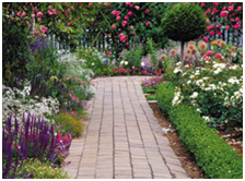 Current Garden Design Trends for you to Replicate