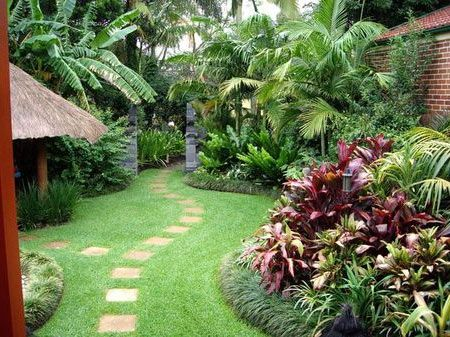 A tropical garden design in sydney blog for valley for Tropical home garden design