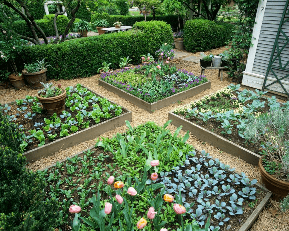 eco friendly garden design