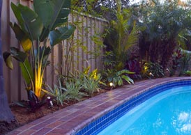 Project showing resort style garden design with swimming pool for Pool garden outlet