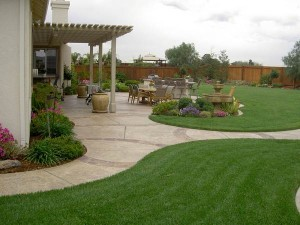 Landscaping-in-Sydney-landscape-design-2