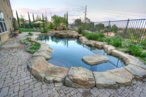 swimming-pool-7-Ideas-for-Modern-Landscaping-Sydney-Homeowners-Should-Consider-02