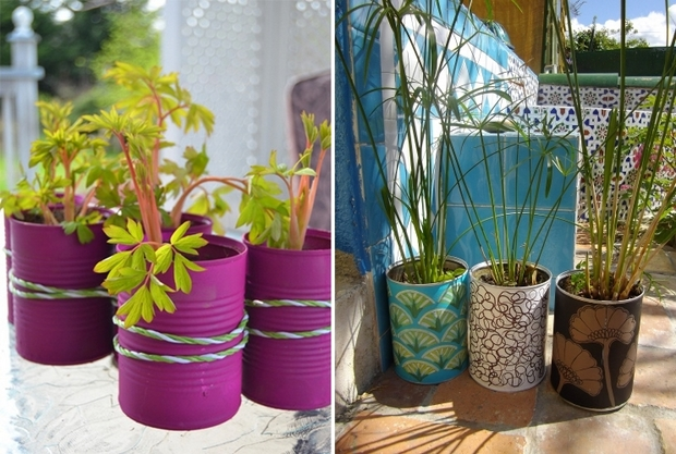 Pot Plant Ideas