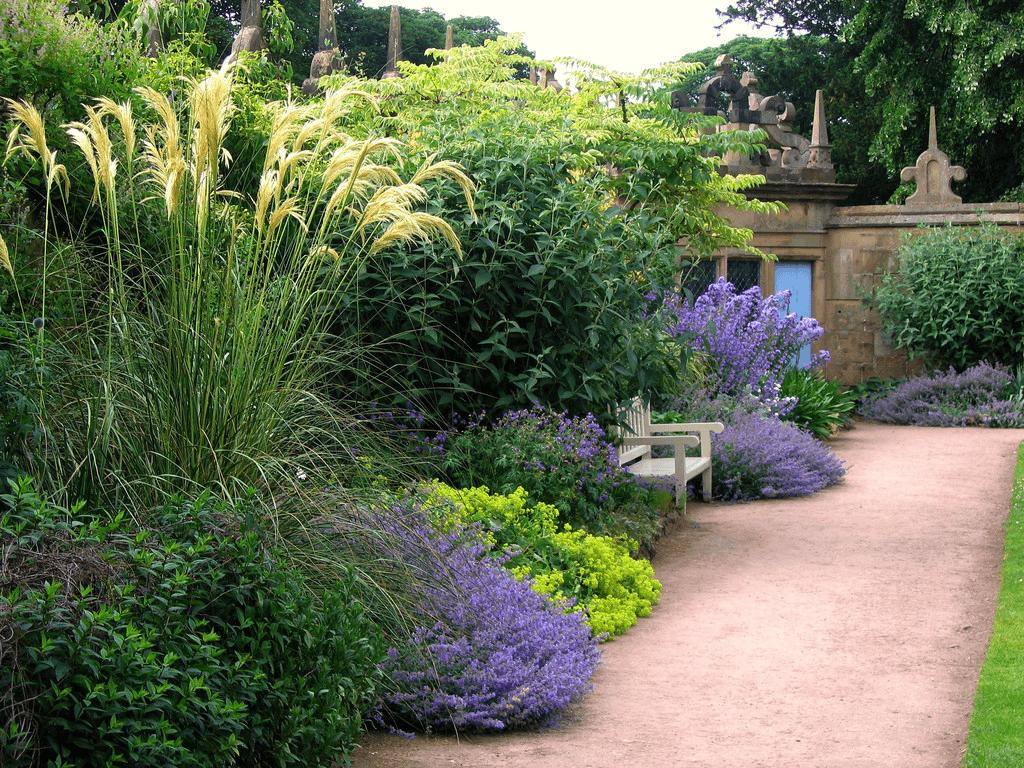 professional garden design